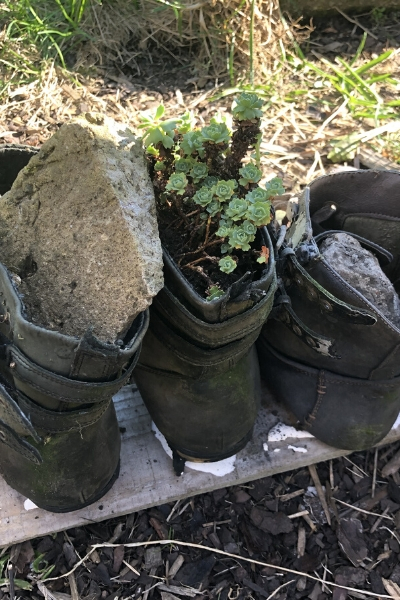 DIY boot planter stabilised