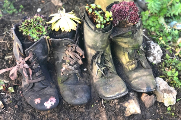 boot planter four in a row