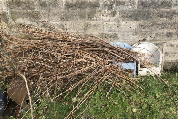 garden waste to be upcycled