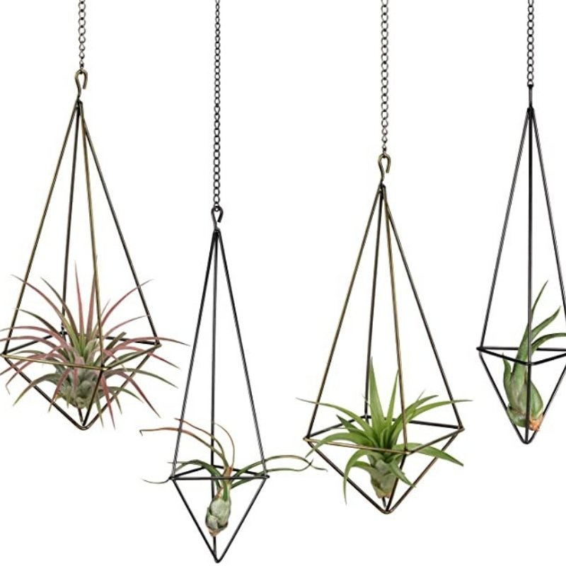 geometric designs hanging planter for succulents