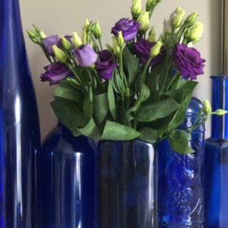 upcycled rubbish - vase from a plastic bottle