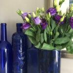 diy vase from a plastic bottle