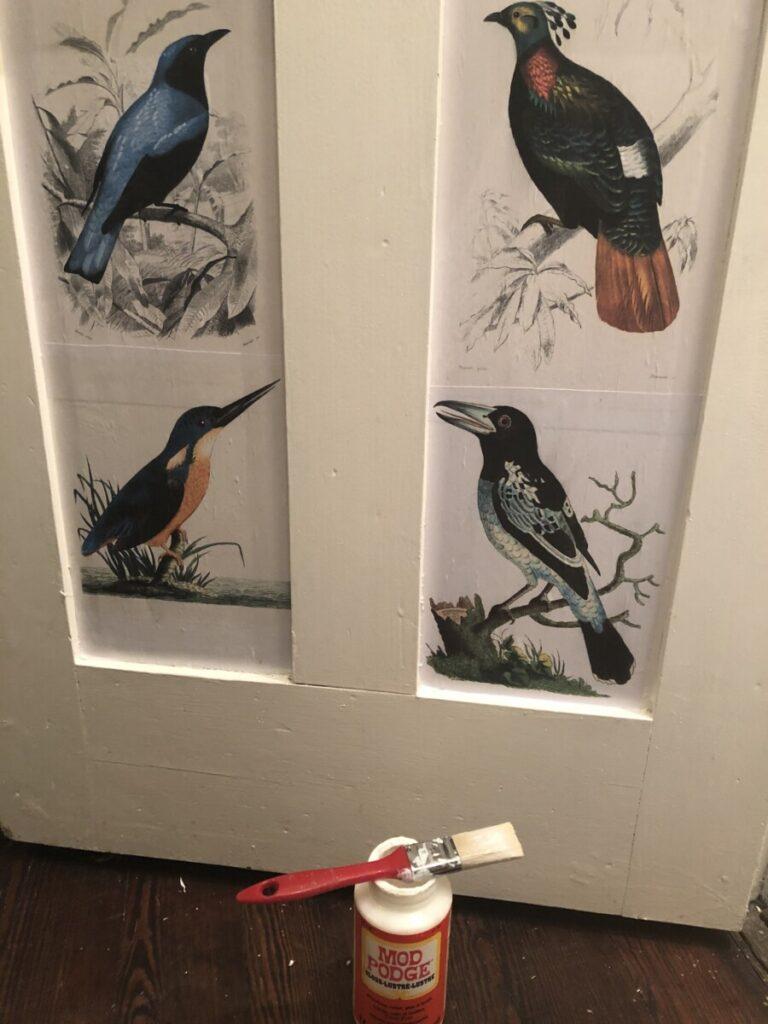 vintage bird illustrations toilet door