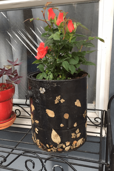 How to upcycle empty paint cans outdoor planter