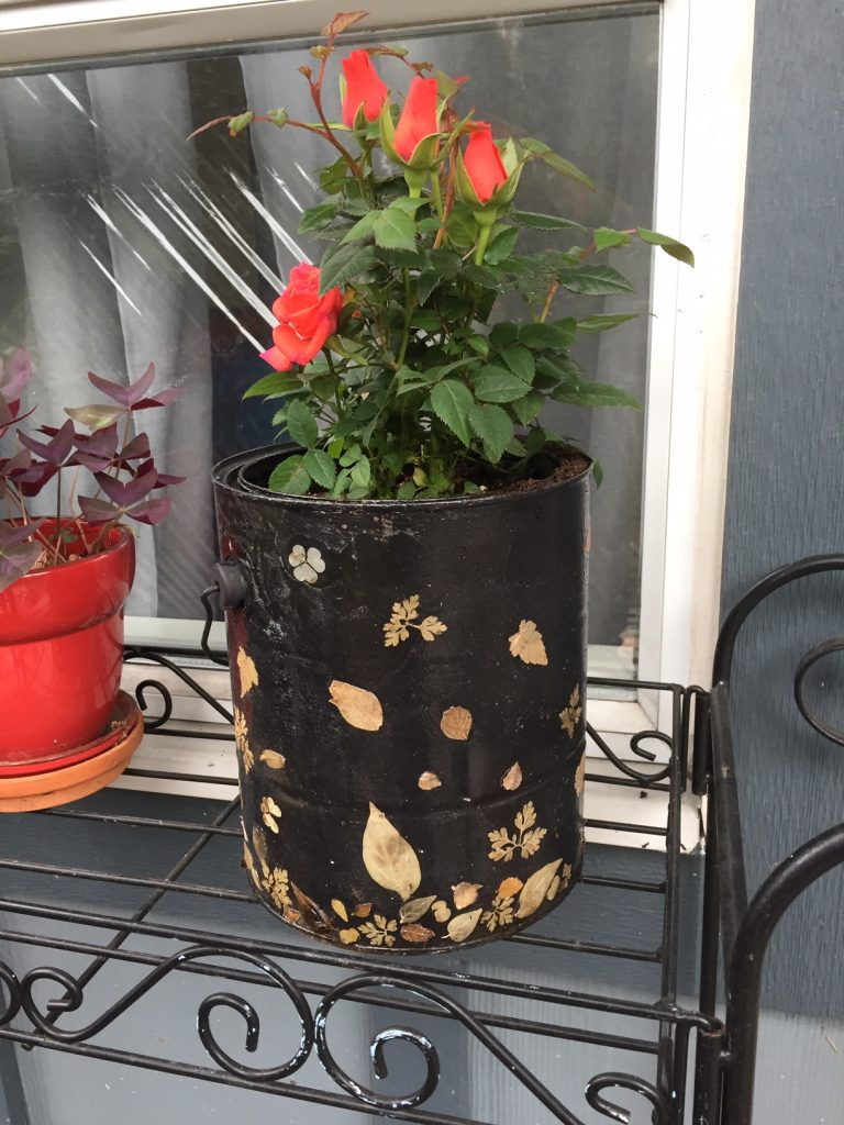 DIY planter from an empty paint can