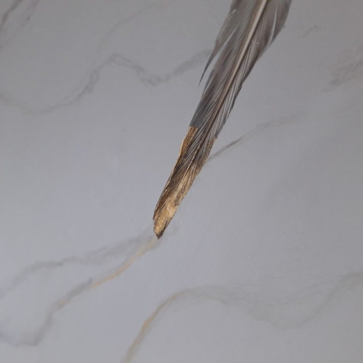 marble effect with a feather
