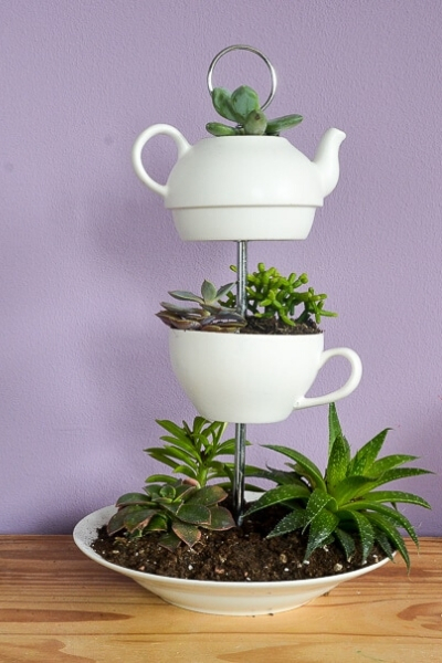tea pot planter