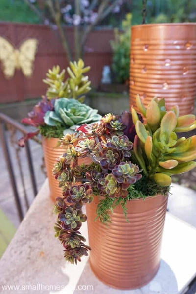 copper tin can planters