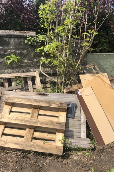 wood off cuts and pallets for upcycling