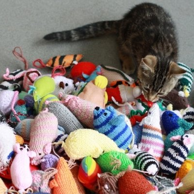 sewing for charity - battersea dogs and cats